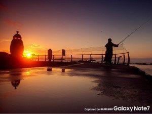 Samsung-Galaxy-Note-7-official-camera-samples (1)