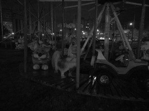 Černobílý snímek