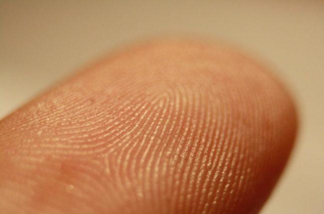 fingerprint-2-470x3102x