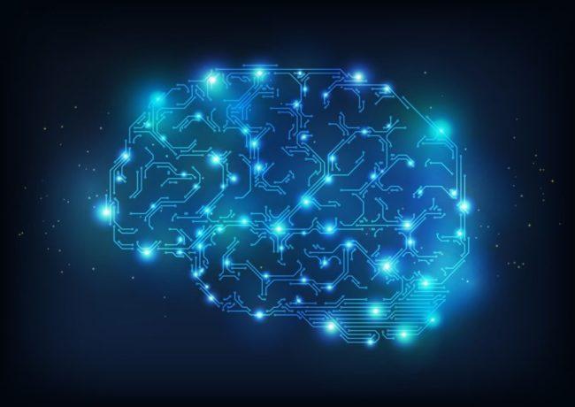 neural, neuronová síť