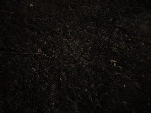 S10 nocni rezim2