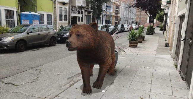 google ar bear