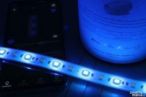 Vocolinc LED LS1 08