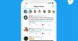 twitter story fleet
