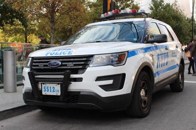 ford policie 2