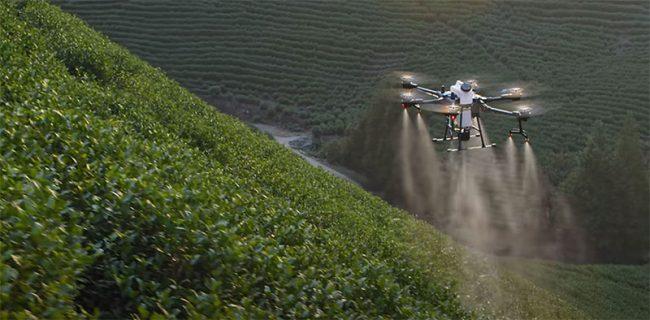 agras t20 hillside spraying