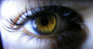 lidske oko nahled