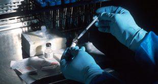 unsplash jehla vakcina