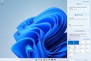 Windows 11 5