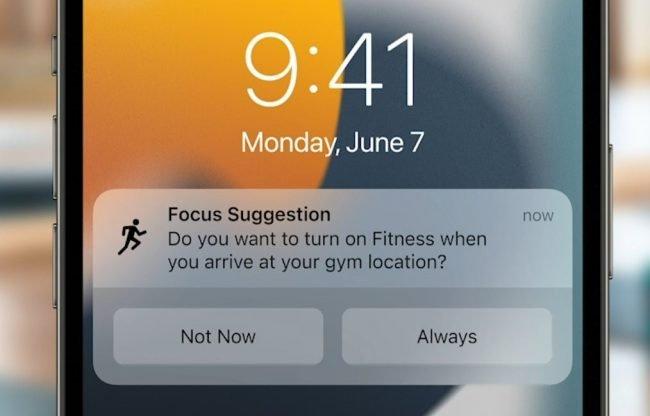 notification 4