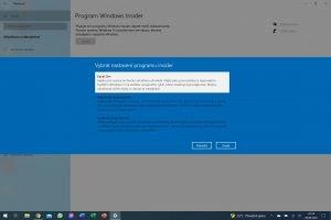 Windows 11 32