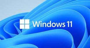 Microsoft Windows 11 logo