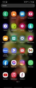 Screenshot 20210823 180638 One UI Home