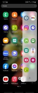Screenshot 20210823 181002 One UI Home